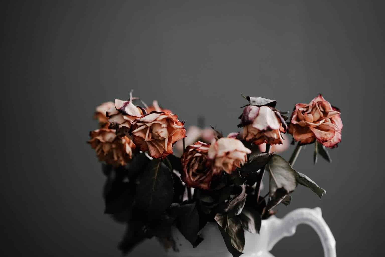 HUE詼- 乾燥花  花藝設計